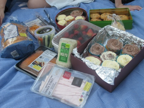 smoked salmon, veggie dip, berries, cupcakes. how could a picnic go wrong <3